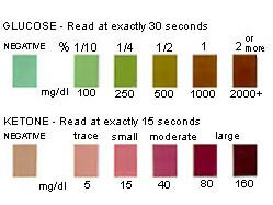 Diabetes in dogs urine test results